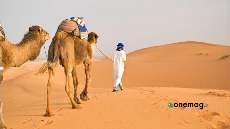 Marocco, Deserto Sahara