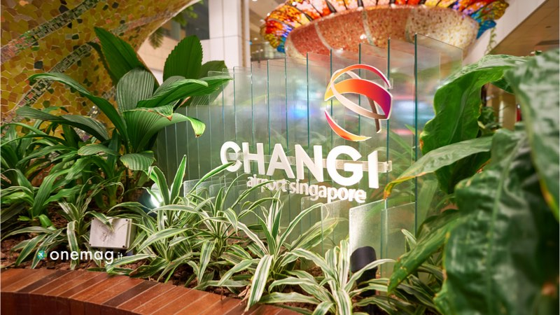 L'aeroporto di Singapore Changi, veduta angolo verde