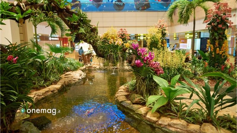 Aeroporto Changi di Singapore, una delle cinque aree verdi