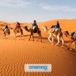 Vacanza nel Sahara, tutto quello che devi sapere