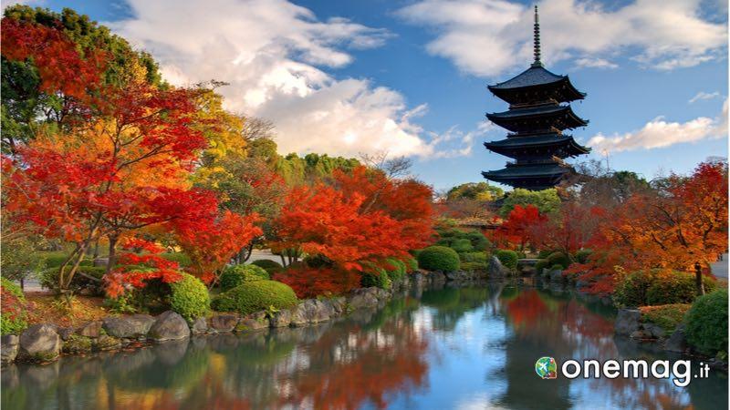 Le città da visitare in Giappone, Nara
