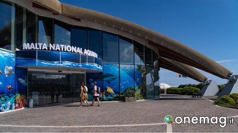 L'acquario di Malta