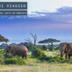 Parco Nazionale di Amboseli in Kenya