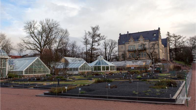 Cosa vedere a Helsinki, veduta giardino