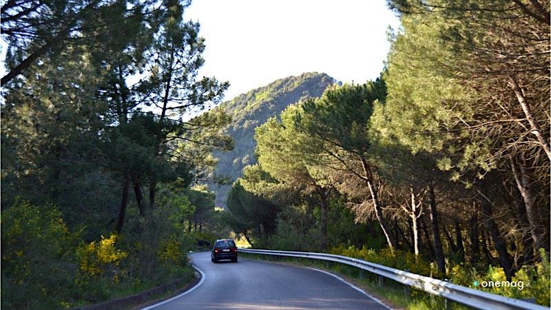 I Parchi Nazionali del Sud Italia