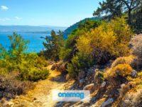 Akamas, la penisola paradisiaca a Cipro