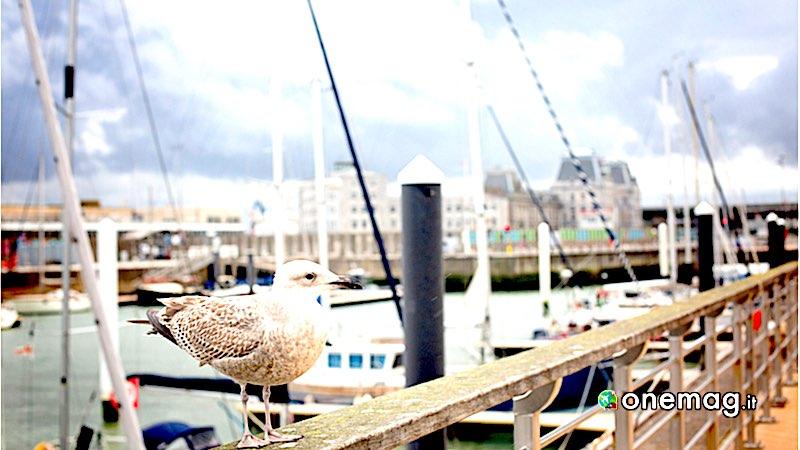 Ostenda, porto