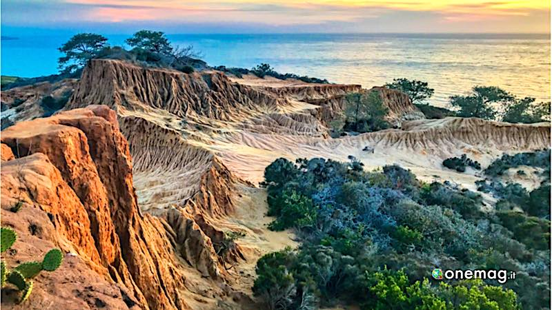 San Diego, Torrey Pines State Natural Reserve