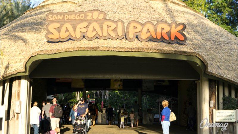 San Diego, Zoo Safari Park