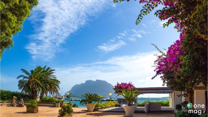 Tavolara, cosa vedere in questa isola della Sardegna