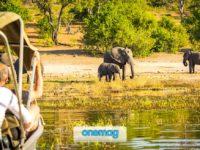 Botswana, cosa sapere prima di partire