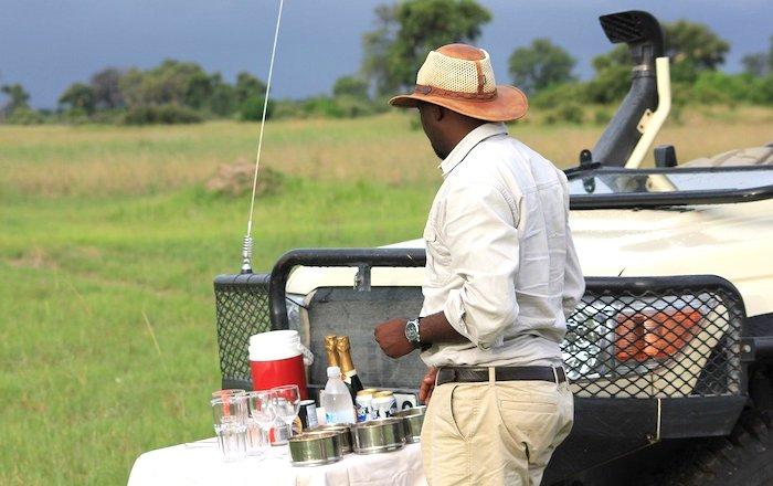 Guida del Botswana, safari