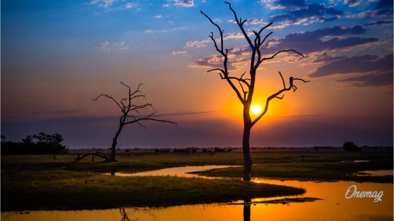 Botswana, Chobe Parco Nazionale