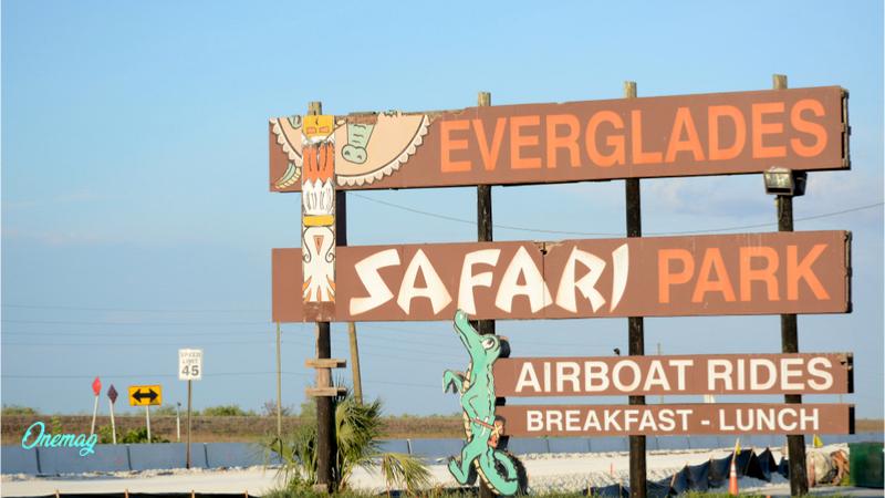 Scopriamo Everglades National Park
