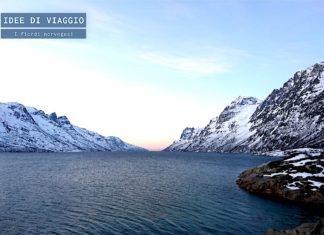 Visitare i fiordi norvegesi