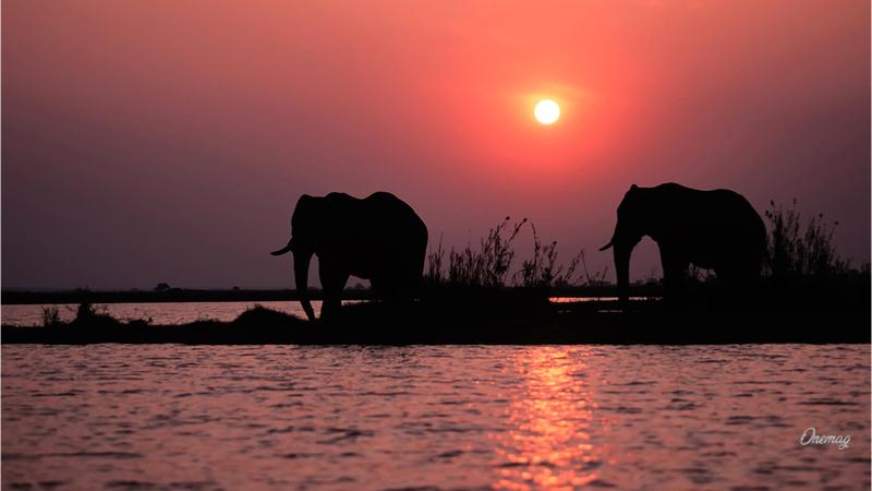 Cosa vedere nello Zambia, il Lago Kariba