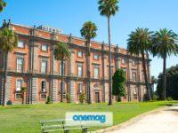 Cosa vedere a Napoli: il Museo di Capodimonte