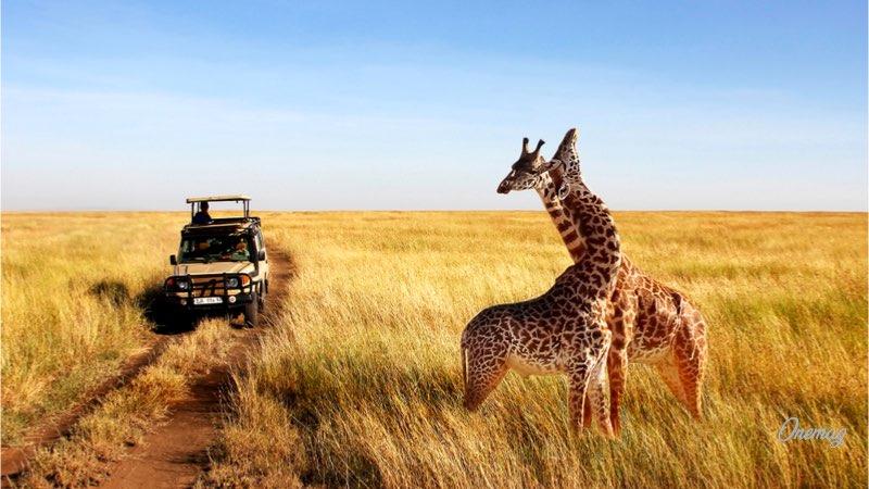 Le mete imperdibili dell'Africa