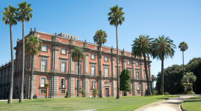 Cosa vedere a Napoli, Museo di Capodimonte