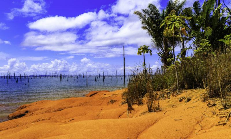 Lake Brokopondo in Surinam