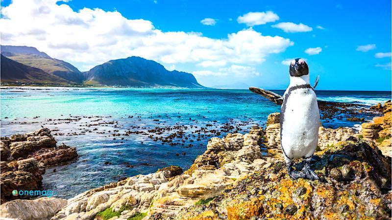 Guida turistica del Sudafrica