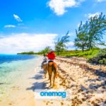 Cosa vedere alle Isole Cayman | Guida di viaggio