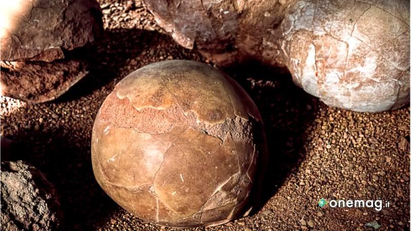 Flaming Cliffs, uova di dinosauro