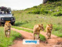 Tanzania, guida turistica di viaggio