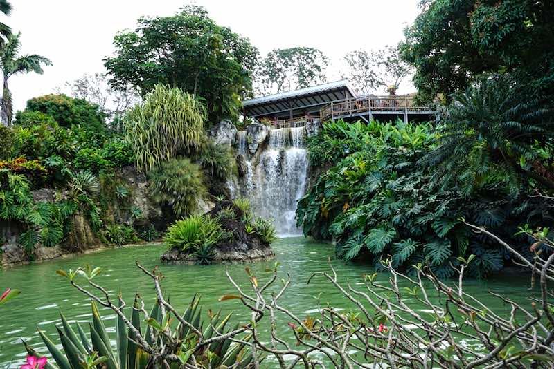 Cosa vedere a Guadalupa, giardino botanico
