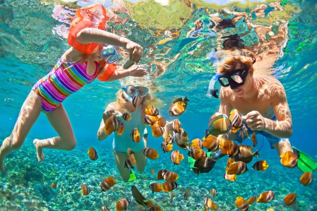 I migliori luoghi per le immersioni