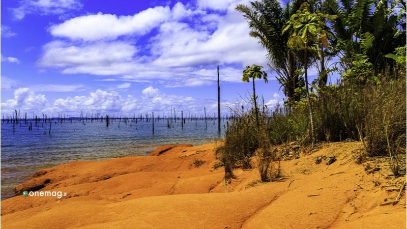 Lago Brokopondo, costa