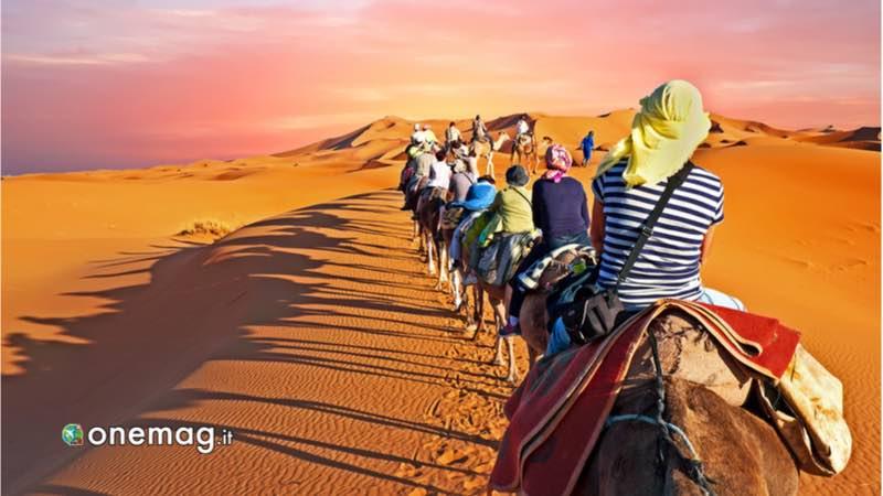 Marocco, deserto Sahara in cammello