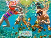 I migliori dieci luoghi per le immersioni