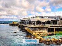 Visitare Monterey Bay Aquarium