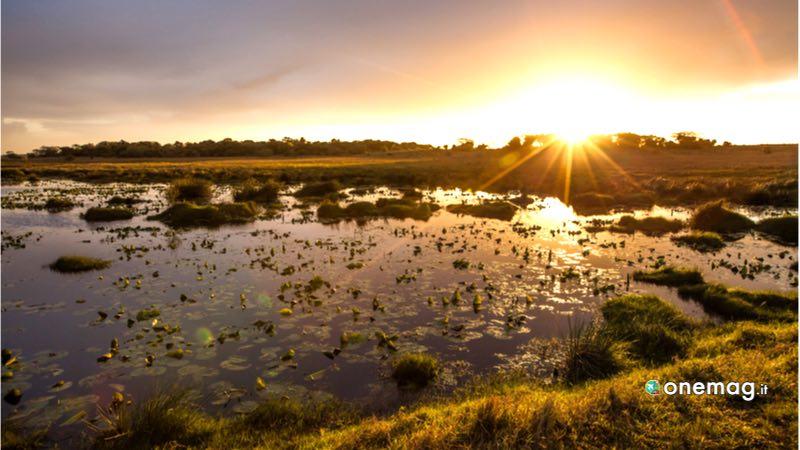 Sudafrica, Isimangaliso Wetland Park