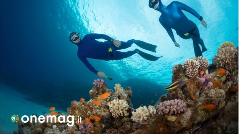 Le immersioni ad Hurghada