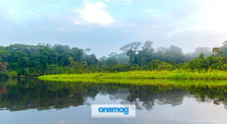 Il Parc Amazonien de Guyane