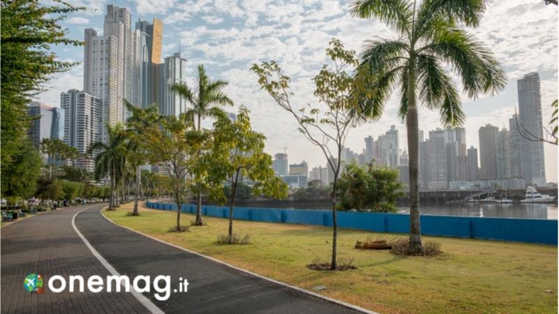 La natura di Panama city