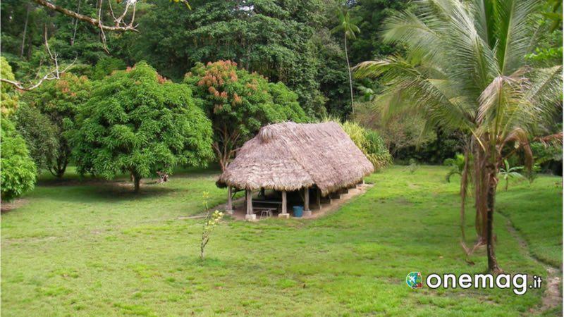 Parco naturale regionale di Guyana