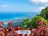 Port-au-Prince, dove iniziano i Caraibi