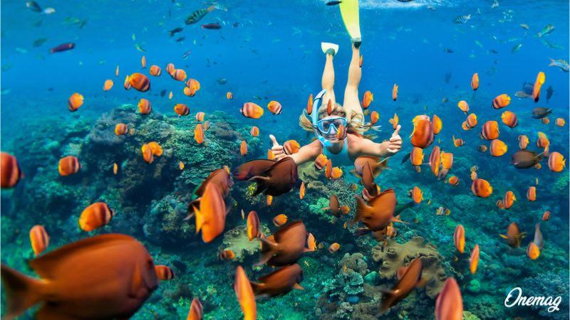 Cosa fare nelle Maldive