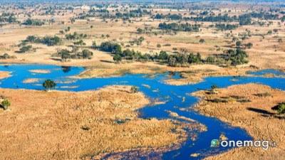 Okavango Prato, Botswana