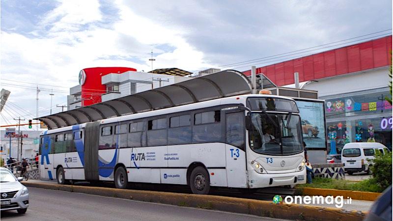 Autobus, Messico