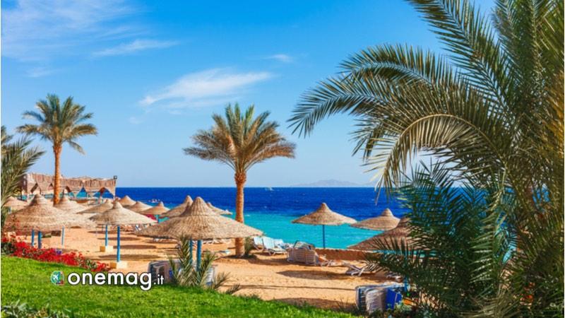 Trascorrere il capodanno in Egitto