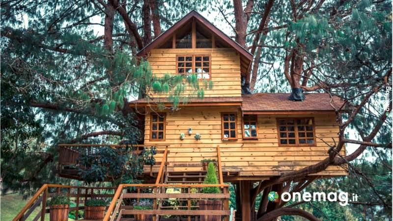 Turchia, casa sugli alberi
