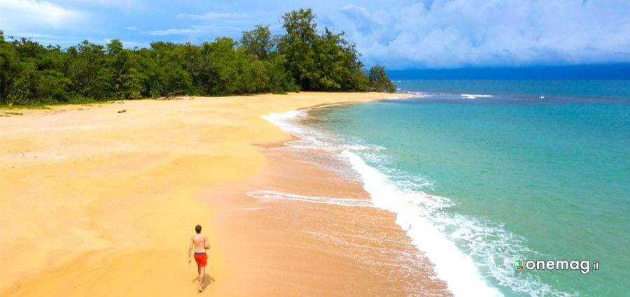 Cosa fare a Bocas del Toro