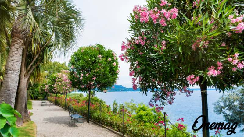Isole Borromee, paradisi nel Lago Maggiore