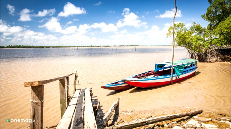Cosa vedere nel Suriname