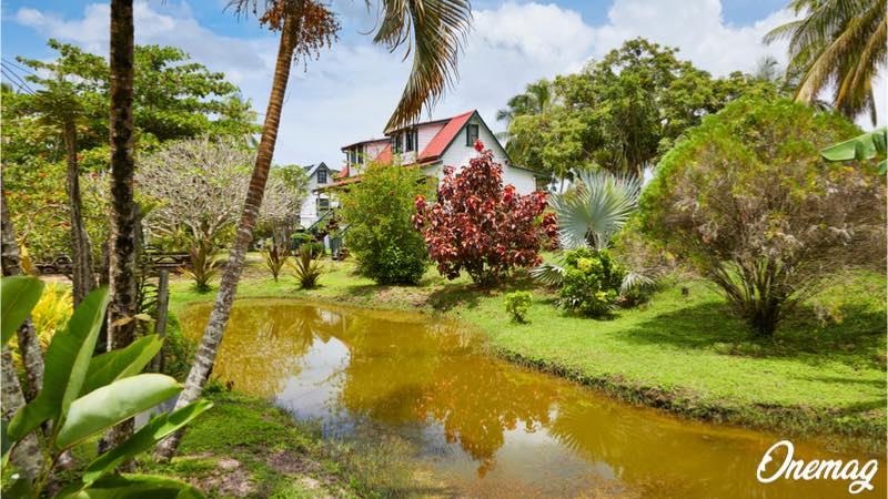 Suriname, la patria dell'ecoturismo