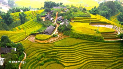 Guida del Vietnam